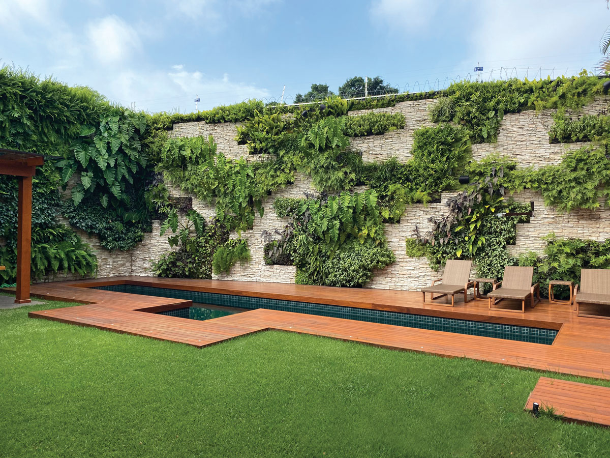 From grand expanses to slivers of wall space, Gutierrez's gardens make greenery accessible. Verde Vertical_FD31-3B